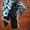 Казистая детская одежда #126121