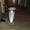продам мопед хонда DIO AF-34 #622673