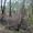 Участок земли в дачном кооперативе ур. Мирный надеждинского района #791723