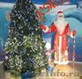 Дед Мороз и Снегурочка для взрослых и детей любого возраста